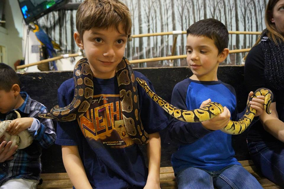 A couple of our boys playing with a snake at the Reptile Guy's place.