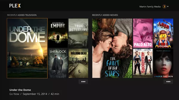 The Plex app looks as good as Apple TV or any other streaming site, but it's data is coming from INSIDE THE HOUSE!